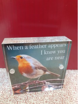 """Robin Square Plaque """"When a feather..."""""""