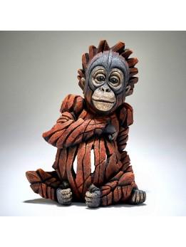 Edge Baby Orangutan